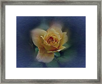 Framed Print featuring the photograph Mid September Rose by Richard Cummings
