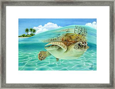 Midday At The Oasis Framed Print