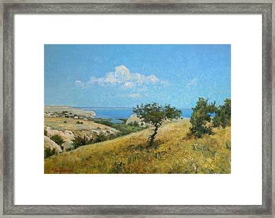 Midday On The Volga Framed Print by Andrey Soldatenko