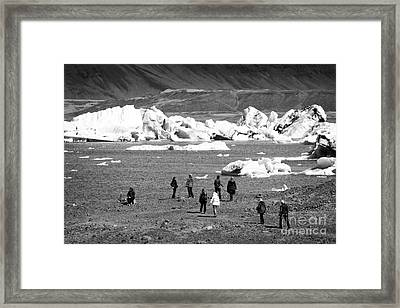 middle aged tourists walking group at Jokulsarlon glacial lagoon Iceland Framed Print