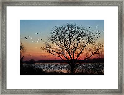 Middle Creek Sunrise 3 Framed Print by Lori Deiter