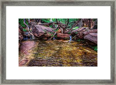 Middle Emerald Pools Zion National Park Framed Print by Scott McGuire