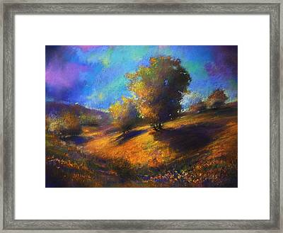 Middle Hylands Meadows Framed Print by Paul Birchak