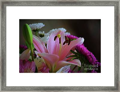 Middle Lily Framed Print