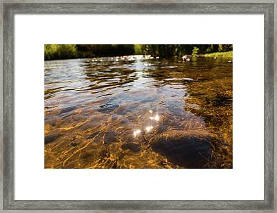 Middle Of The River Framed Print