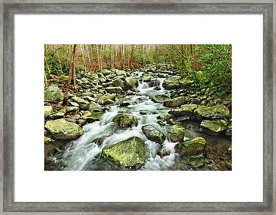 Middle Prong Little Pigeon River Framed Print by Edwin Verin