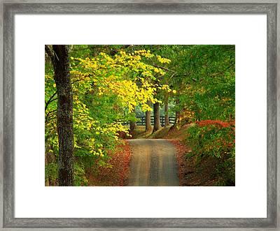 Middleburg Road Framed Print