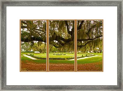Framed Print featuring the photograph Middleton Gardens Triptych by Bill Barber