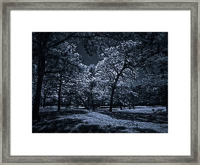 Framed Print featuring the photograph Midnight Blues by Linda Unger