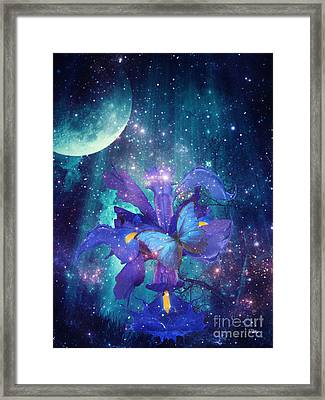 Midnight Butterfly Framed Print by Mo T