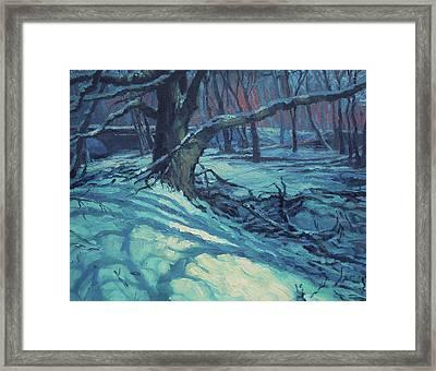 Midnight Coppei Framed Print