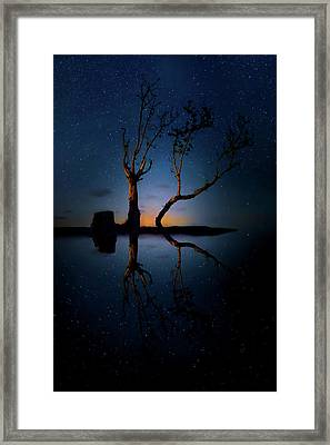 Midnight Dance Of The Trees Framed Print by Mark Andrew Thomas