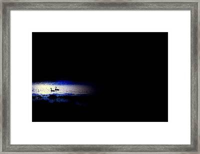 Midnight Float Framed Print