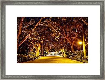 Midnight In The Garden Framed Print by Renee Sullivan