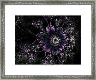 Midnight Mistletoe Framed Print