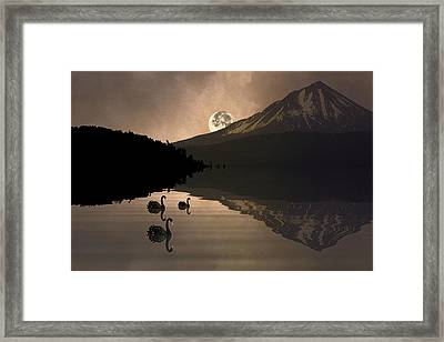 Framed Print featuring the photograph Midnight Moods Swan Lake In The Moonlight by Diane Schuster