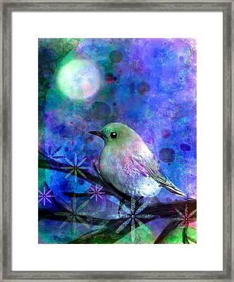 Midnight Oasas Framed Print