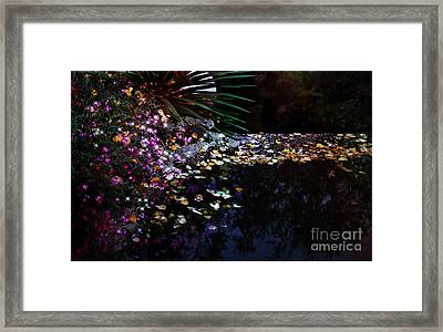 Midnight Oasis Framed Print