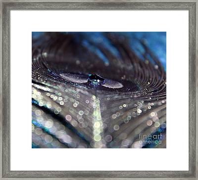 Midnight Peacock Framed Print by Krissy Katsimbras
