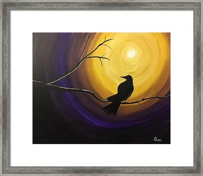 Midnight Raven Framed Print