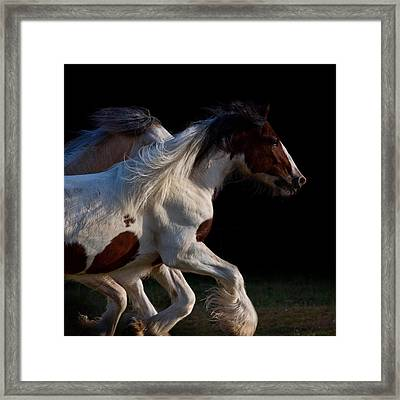 Framed Print featuring the photograph Midnight Run by Sharon Jones