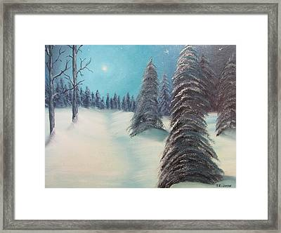 Midnight Silence Framed Print