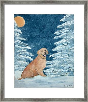 Midnight Snow Framed Print by Tammy Brown