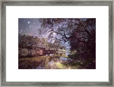 Midnight Serenade  Framed Print by Pamela Patch