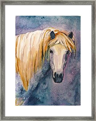 Framed Print featuring the painting Midnight Stallion by P Maure Bausch