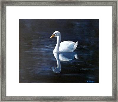 Midnight Swan Framed Print
