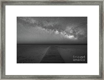 Midnight Swim Bw Framed Print by Michael Ver Sprill