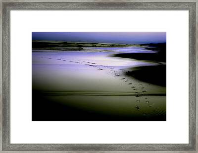 Framed Print featuring the photograph Midnight Swim by Gray  Artus