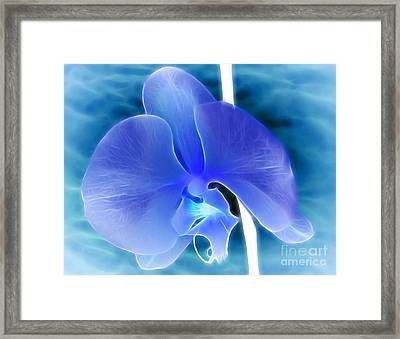Midnight Whisper Framed Print by Krissy Katsimbras