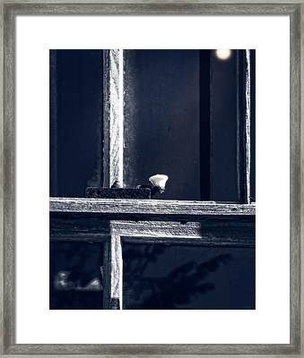 Midnight Window Framed Print