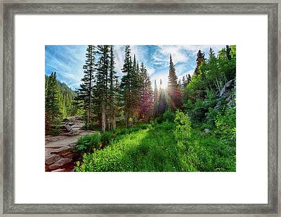Midsummer Dream Framed Print
