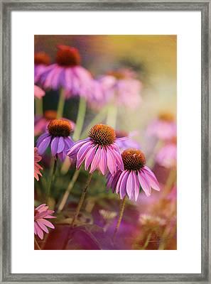 Midsummer Dreams Framed Print