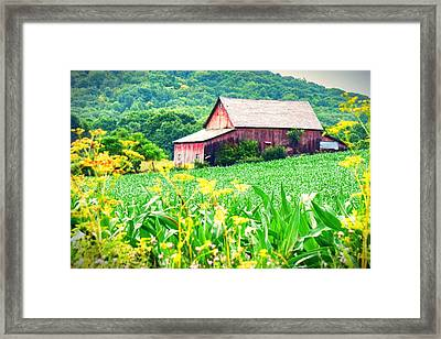 Framed Print featuring the photograph Midsummer  by Kendall McKernon