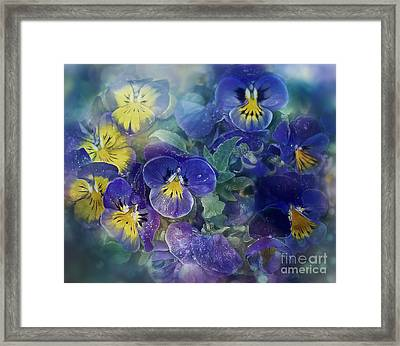 Midsummer Night's Dream Framed Print by Agnieszka Mlicka
