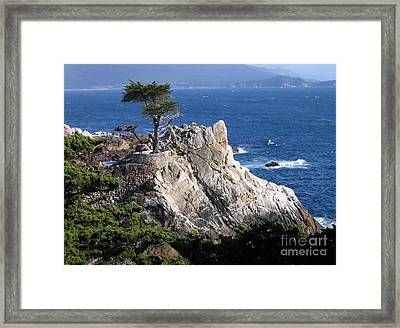 Midway Point Framed Print