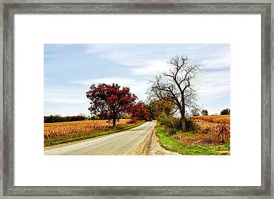Midwest Autumn  Framed Print