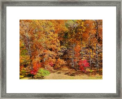 Midwest Fall Colors  Framed Print by Theresa Campbell