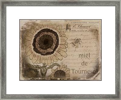 Miel De Tournesol  Framed Print by Joely  Rogers