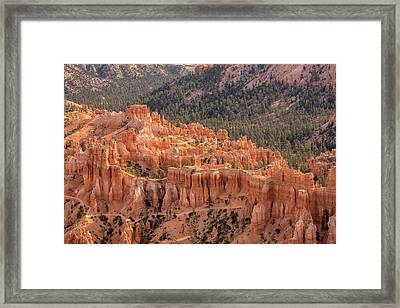 Mighty Fortress Framed Print