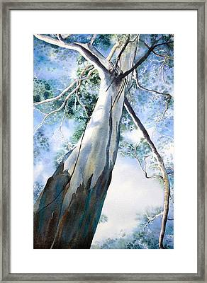 Mighty Gum Framed Print by Carol McLagan