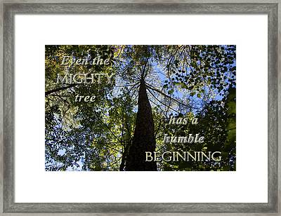 Mighty Tree Framed Print