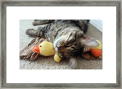 Mikino And Ducky Naptime Framed Print by Jaeda DeWalt