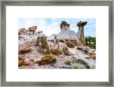 Mikoshika State Park Framed Print