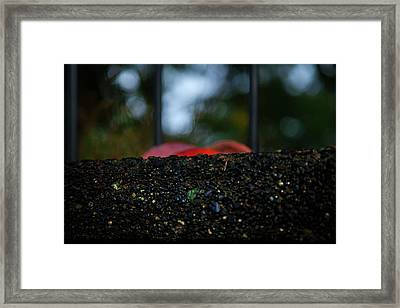 Miksang 2 Autumn Rain City Framed Print