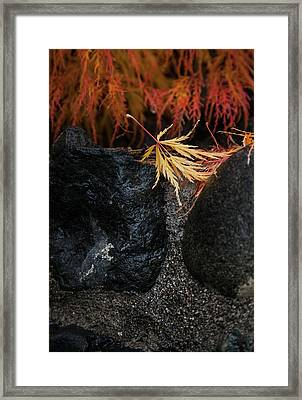Miksang 5 Autumn Framed Print
