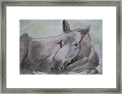 Mildred The Moose Resting Framed Print